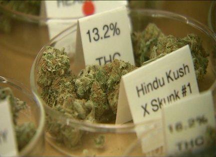 Illinois House passes medical marijuana bill