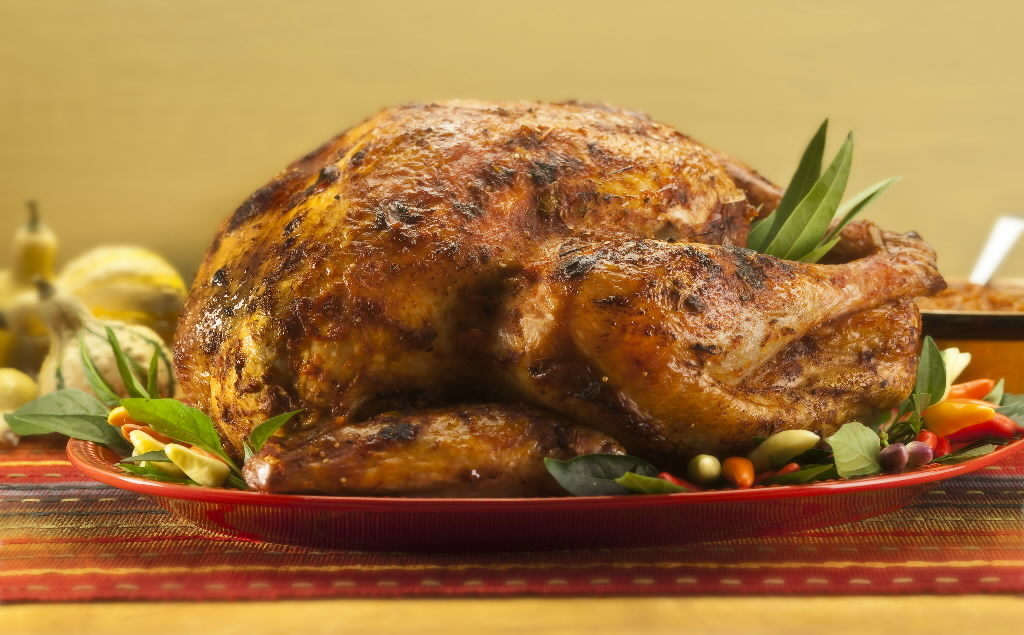 ThanksgivingTurkey-25233731