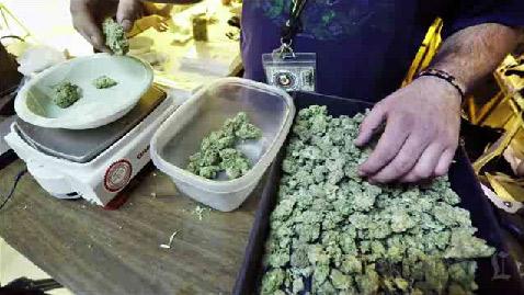 MarijuanaSalesLegalInColorado-NDN