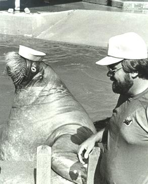 Bob Collins comparing facial hair and headwear with an aquatic friend