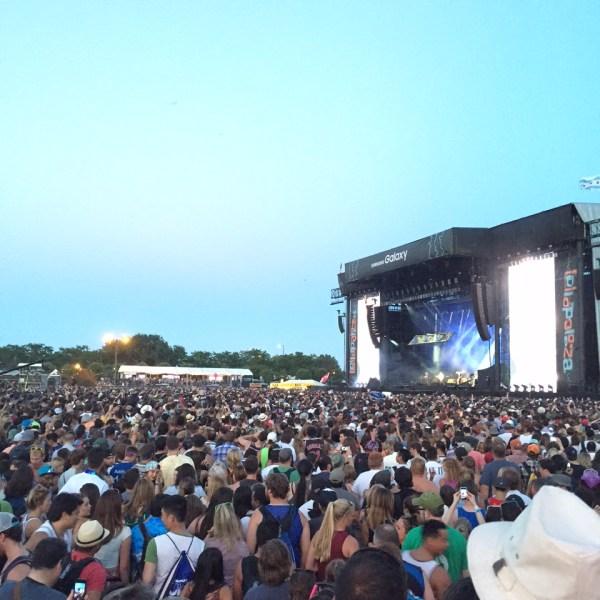 Lollapalooza (Photo Cred: Michael Heidemann)