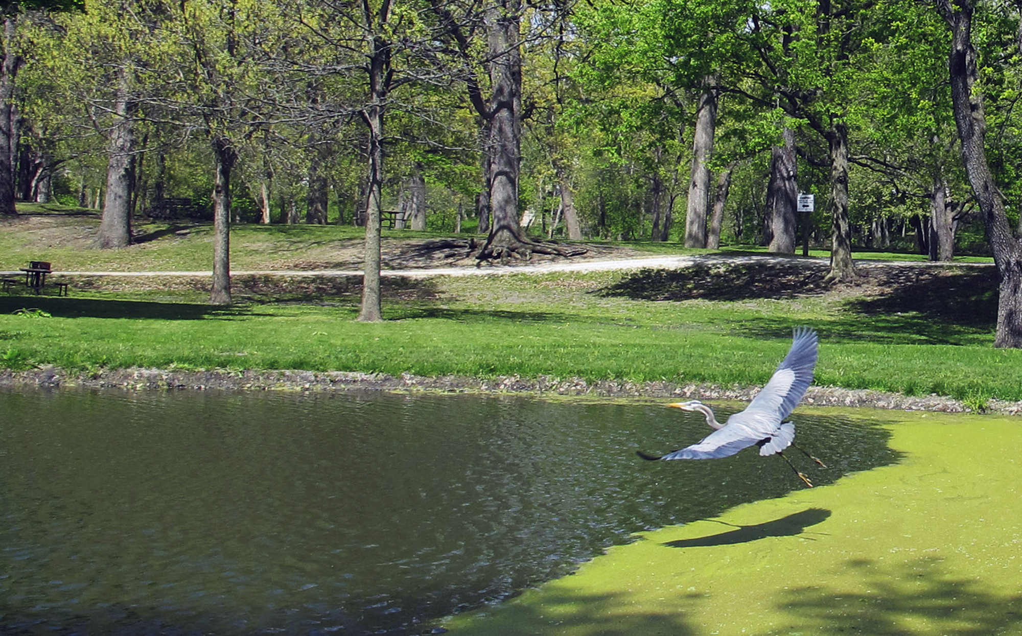 Illinois State Parks open May 29th, here's what you need to know | WGN  Radio 720 - Chicago's Very Own